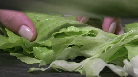 marul : Female hands slicing lettuce on stone cutting board