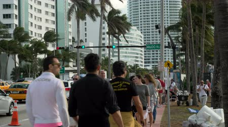 metropolitan area : Traffic and people walking along the sea in downtown Miami