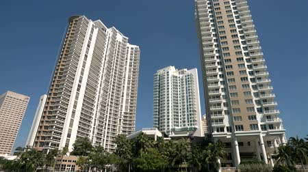 Tall buildings and palm trees along the sea in Miami, seen from a boat Dostupné videozáznamy