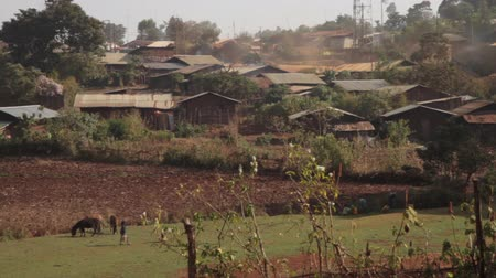 falu : Typical village found in rural part of Ethiopia, Africa, Stock mozgókép
