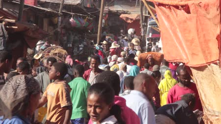 The Mercato, Ethiopia, Addis Ababa, the biggest open air market in Africa.