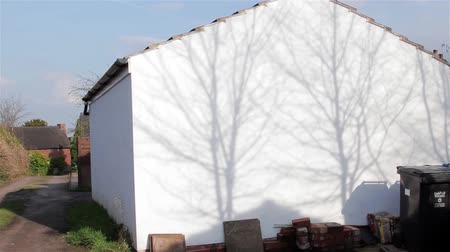 rasgele : Silhouette Shadow of Tree Branches Gently Sway on White Garage on Country Lane - English Countryside Natural Random Backgrounds Stok Video