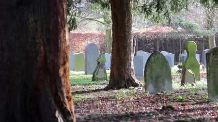 churchyard : Squirrels Play and Climb Trees in Picturesque Church Yard in Morning Light