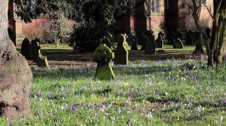 churchyard : Picturesque Church Yard in Beautiful Morning Light - pretty colorful flowers