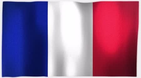 três quarto comprimento : 4K 3D Animation of French France Whole Flag Canvas Texture Vídeos