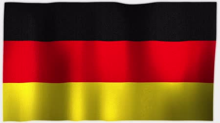 três quarto comprimento : 4K 3D Animation of German Germany Whole Flag Canvas Texture