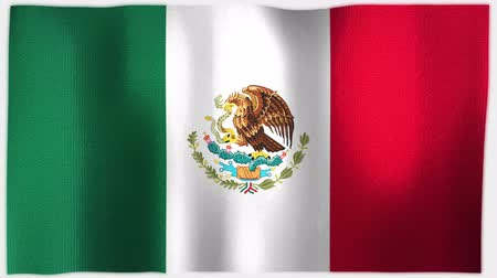 meksika : 4K 3D Animation of Mexico  Mexican Whole Flag Canvas Texture