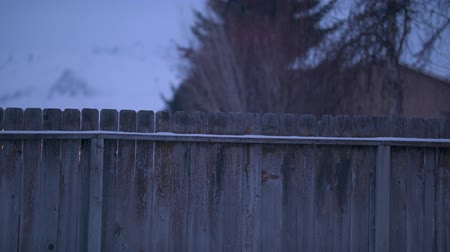 Footage of a light snowfall over a fence in central Washington.