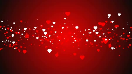 duvar kağıdı : red and white hearts over a red backdrop. Valentines day motion background. flying hearts animation.