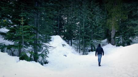 deep snow : Man Walks Into Snowy Winter Woods Stock Footage