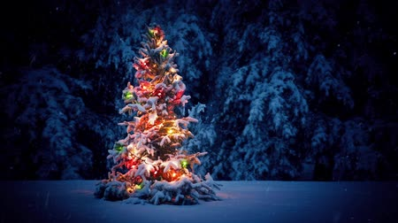 outside : Colorful Christmas Tree In The Snow