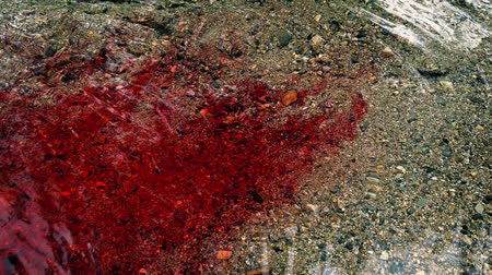 seeping : Lots Of Blood Flowing In The River