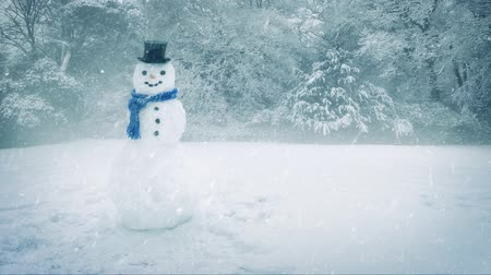 snows : Snowman In Heavy Snowfall