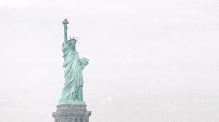 snows : The Statue Of Liberty In Snowstorm