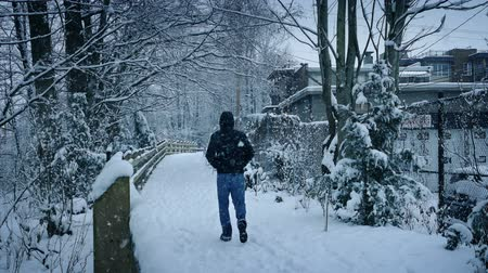 hóvihar : Person Walks On Path In Snowfall