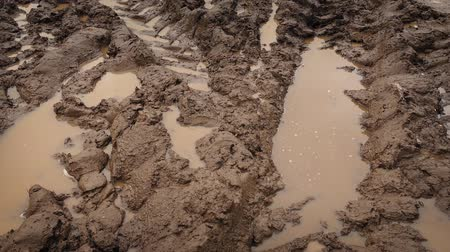 chunky : Moving Over Big Tire Tracks In The Mud