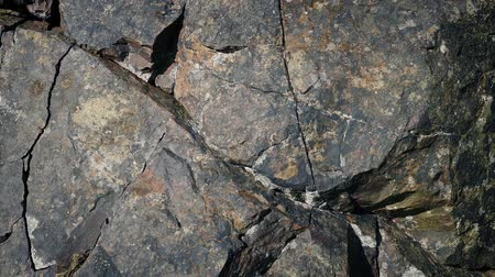 metamorphic : Following A Crack In Rock Surface