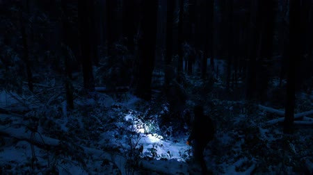 searches : Man With Torch In Snowy Forest At Night