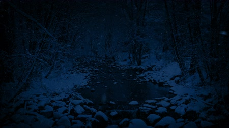 snows : River In Snowy Woodland At Night Stock Footage