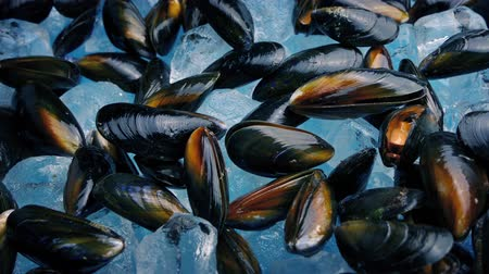 midye : Mussel Food Platter On Ice