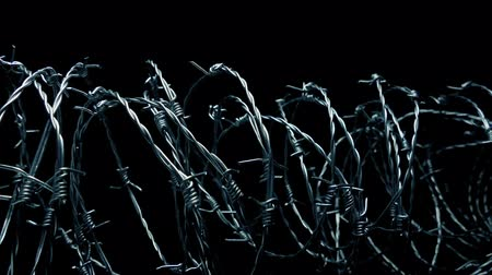 political prisoner : Barbed Wire Illuminated By Searchlight