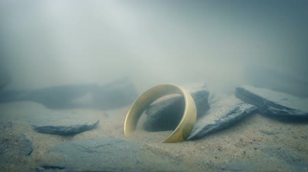 picked up : Ring On Lake Floor In Sun Rays