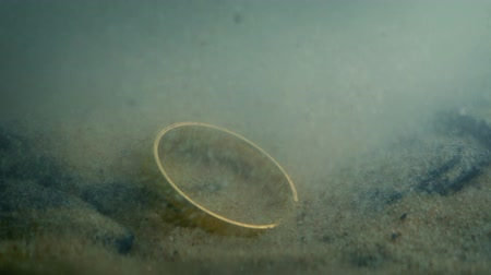 picked up : Sand Washes Over Ring Underwater