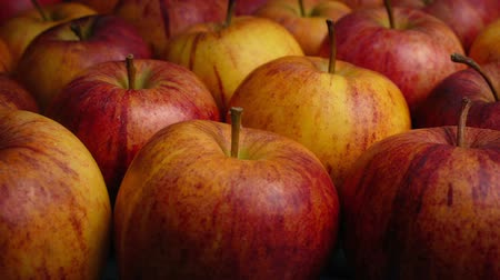 piled : Colorful Apples Moving Shot