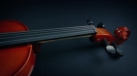 mozart : Violin Revealed Under Velvet Stock Footage