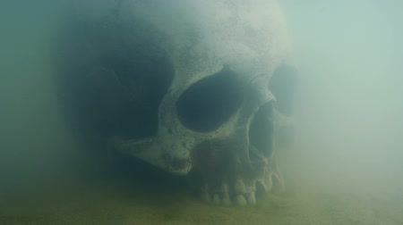 mitolojik : Old Skull Underwater Moving Shot