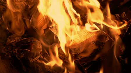 evidência : Book Pages Curling Up In Fire