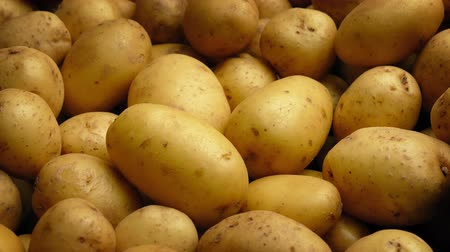 piled : Potato Pile Moving Shot Stock Footage