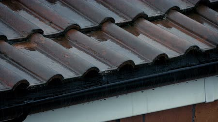 gushing : Roof And Gutter In Heavy Rainfall