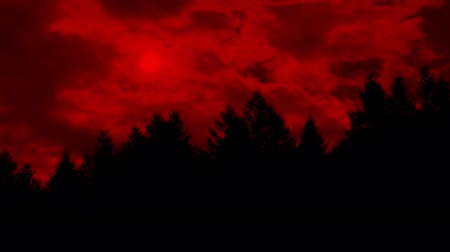bibliai : Red Sun Glows Through Clouds Above The Forest