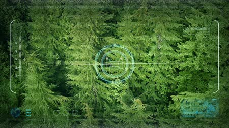 arborizado : Drone POV Aerial Above Forest Trees