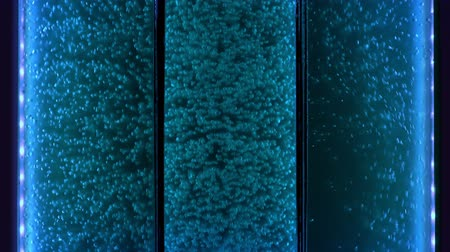 fission : Blue Glass Tank With Bubbling Liquid