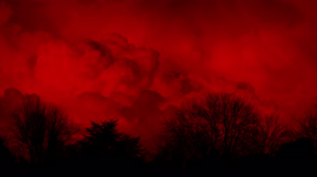 sways : Huge Red Clouds Behind Trees Abstract