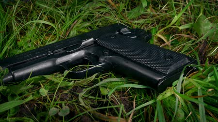 quadrilha : Gun In Grass Moving Shot