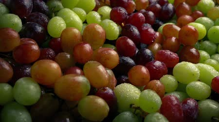промывали : Passing Juicy Mixed Grapes