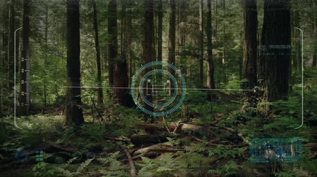 secretário : Drone HUD Display Flying In The Forest
