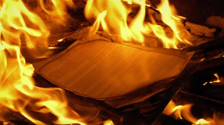 отменить : Document Papers Burn In Fire - Generic Content Стоковые видеозаписи