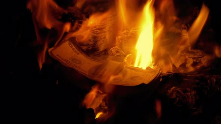 pile of money : Piles Of Money Burning In The Fire Stock Footage