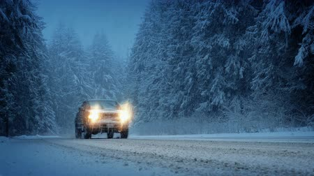 snows : Cars In Snowy Forest In The Evening