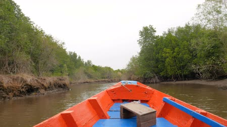 bentota : Boat view moving forward nearly mangrove forest at the river estuary the conserve sea nature environment