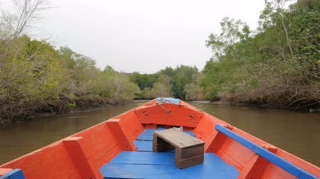 gyertyafa : Boat view moving forward nearly mangrove forest at the river estuary the conserve sea nature environment