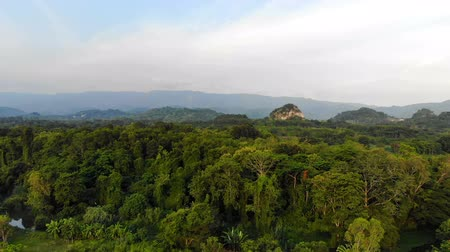 4K Drone shot aerial view scenic landscape of nature tropical forest Stock Footage