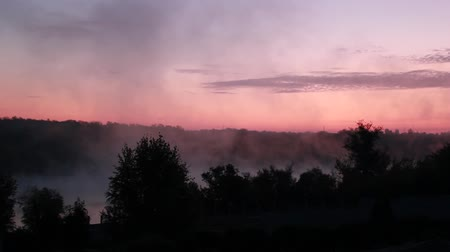cockcrow : Morning mist Stock Footage