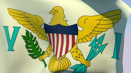 avrupa birliği : Flag of Virgin Islands United States Stok Video