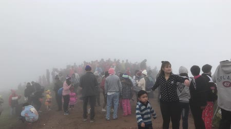 unidentified : Chiangrai, Thailand 1 January 2018 : Unidentified tourist visit and enjoying nature in the fog Phu chi fa, Thailand Stock Footage