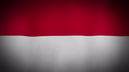 indonesia : Flag Indonesia